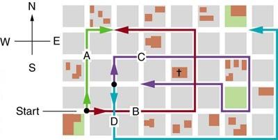 <b>Figure 3.54:</b> Different paths taken by people walking in a city.