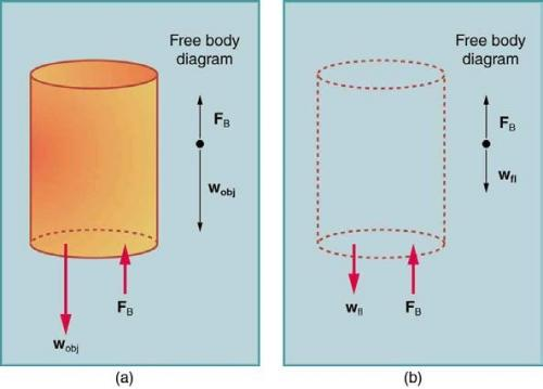 <b>Figure 11.20</b> An object submerged in a fluid experiences a buoyant force.